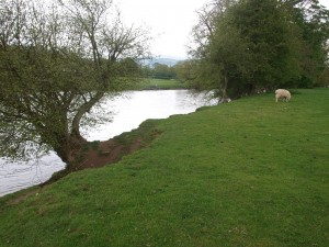 Our first view of The Wye