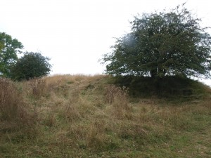 Shenberrow Hill Fort